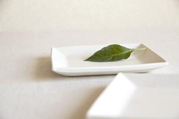 お皿(中)4
